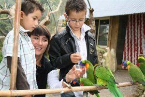 Visite avec les enfants en Bretagne Tropical parc proche hébergements en chalets